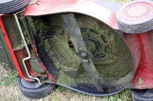 Clean Your Mower Regularly