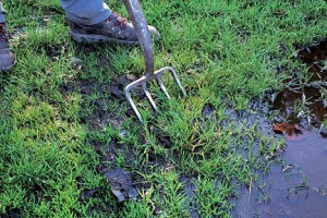 Aerate Your Waterlogged Lawn